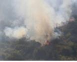 Požar u Župi: Izgorjelo 2.5 hektara šume