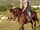 Ovo je mladić iz Brodosavca koji je danas izgubio život nakon što je pao sa konja!