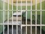 Dvojica osuđenih za ubistvo pobegla iz lipljanskog zatvora