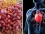 Vrlo jeftina a niko je ne kupuje: Ovo je namirnica broj jedan protiv srčanog udara, hipertenzije, moždanog i holesterola!