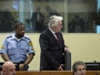U koju državu će Radovan Karadžić biti poslan na izdržavanje kazne?